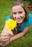 拿着一朵黄色花的微笑的少妇 库存图片