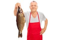 拿着一条大鱼的成熟鱼贩子 免版税库存图片