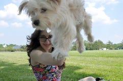 拿着一条幼小Havanese狗的愉快的女孩 库存照片