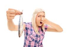 拿着一条腐败的鱼的白肤金发的妇女 库存照片