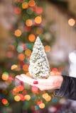 拿着一棵微小的假日树 免版税库存图片