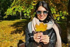 拿着一棵槭树的秋天叶子的女孩在她的手上 库存照片
