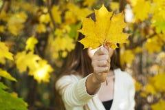 拿着一片下落的叶子的女孩 库存图片
