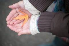 拿着一片下落的黄色叶子的女孩 免版税库存照片