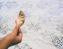 拿着一片金黄叶子的手 图库摄影