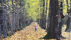 拿着一片黄色叶子的愉快的矮小的金发孩子运行在秋天自然 股票录像