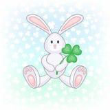 拿着三叶草叶子的兔宝宝 库存图片
