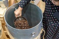 拿着不锈的瓢用在c的烤咖啡豆的亚洲孩子 图库摄影