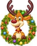拿着与丝带、球和弓的动画片滑稽的鹿圣诞节花圈 库存图片
