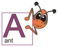 拿着与信件A的蚂蚁一个标志 免版税库存图片