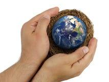 拿着与地球里面的顶视图男性手巢被隔绝 库存照片