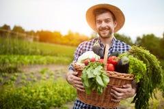 拿着与有机菜的人篮子 免版税图库摄影