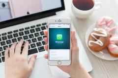 拿着与福利事业WhatsApp的妇女iPhone 6S罗斯金子 免版税库存照片