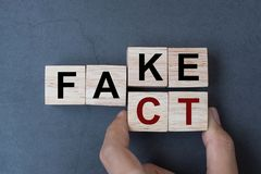 拿着与轻碰块伪造品的商人手木立方体对在桌背景的事实词 新闻、解答和企业概念 免版税库存照片