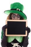 拿着与copyspace的滑稽的妖精板岩,在whi 免版税库存图片