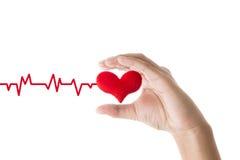 拿着与ecg线的手红色心脏在白色背景, 免版税库存图片