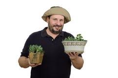 拿着两个花盆的有胡子的花匠 库存照片