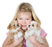 拿着二只小狗的女孩 图库摄影