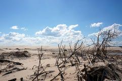 拿着云彩,安娜海湾海滩,澳大利亚 免版税库存照片