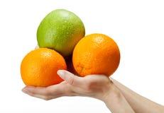 拿着人的新鲜水果现有量 库存图片