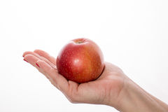 拿着几个红色苹果的妇女的手  图库摄影
