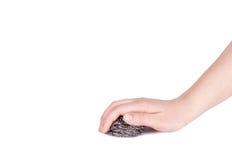 拿着刮板的女性手 免版税库存图片