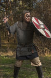 拿着剑和盾在狂放的自然背景的北欧海盗 库存照片