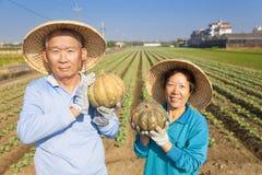 拿着南瓜的亚裔资深夫妇农夫 免版税库存图片