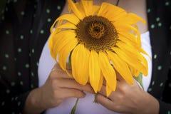 拿着向日葵的一个美丽的女孩 免版税图库摄影