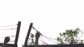 拿着和劫掠-铁丝网在平衡的金黄小时日落的金属篱芭-危险笼子的标志妇女的手和 股票录像