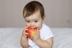 拿着和咬住一个大红色苹果的逗人喜爱的小孩 免版税库存照片