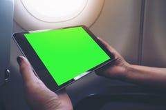 拿着和看有空白的绿色桌面屏幕的妇女的大模型图象黑片剂个人计算机在飞机窗口旁边 免版税库存照片
