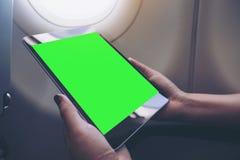 拿着和看有空白的绿色桌面屏幕的妇女的大模型图象黑片剂个人计算机在飞机窗口旁边 库存照片