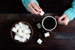 拿着咖啡和pittimg的蓝色毛线衣的女孩marshma 免版税库存图片