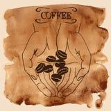 拿着咖啡豆的人的手 免版税库存图片