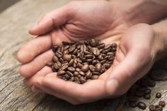 拿着咖啡豆的手基于谷仓木头表 库存图片