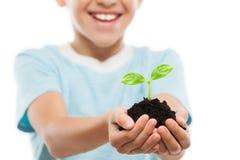 拿着土壤生长绿色新芽叶子的英俊的微笑的儿童男孩 库存图片
