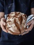 拿着土气面包的贝克人在手上 免版税图库摄影