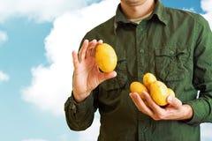 拿着土豆的农夫 免版税库存图片