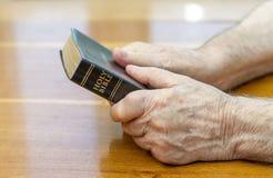 拿着圣经 免版税库存图片
