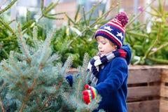 拿着圣诞树的美丽的微笑的小男孩 图库摄影