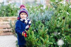 拿着圣诞树的美丽的微笑的小男孩 免版税库存图片