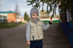 拿着圣诞树的美丽的矮小的微笑的孩子孩子 一个镶边帽子的男孩 库存照片