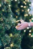 拿着圣诞装饰、礼物盒和松树分支的妇女手 库存照片