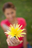 拿着在一个现有量的妇女一朵黄色花 图库摄影