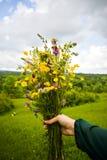 拿着在她的手上与多彩多姿的野花的女孩美丽的花束 令人惊讶的束在自然的wilf花 库存照片