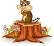 拿着在树桩的动画片花栗鼠花生 免版税库存照片