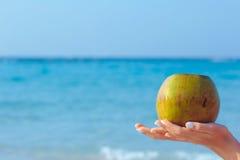 拿着在海背景的女性手椰子 免版税图库摄影