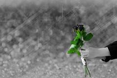 拿着在灰色光模糊和bokeh的手黑暗玫瑰色花 免版税库存图片