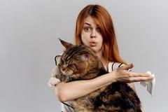 拿着在灰色背景的年轻美丽的妇女一只猫,过敏对宠物 库存照片